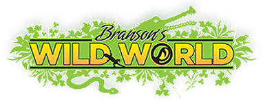 Branson's Wild World Promo Codes